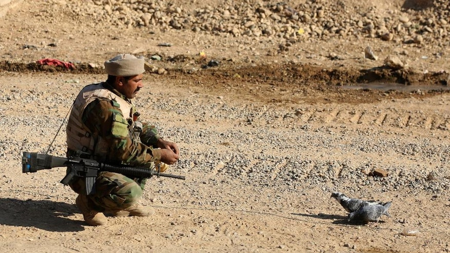 An Iraqi Army soldier feeds pigeons after regaining control of a village outside Mosul, Iraq, Tuesday, Nov. 29, 2016. Iraqi forces are assaulting villages far south of Mosul in the Nineveh province, attempting to clear rural areas of Islamic State fighters who stayed behind to hinder their advance. (AP Photo/Hadi Mizban)