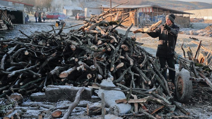 In this Dec. 8, 2016 picture a man unloads fire wood in Dambu, Romania. Romanians will vote in parliamentary elections on Dec. 11, a year after a massive anti-corruption drive forced its last prime minister Victor Ponta from power, media moguls were imprisoned and one of the leaders of the second biggest party quit over a graft probe.(AP Photo/Vadim Ghirda)