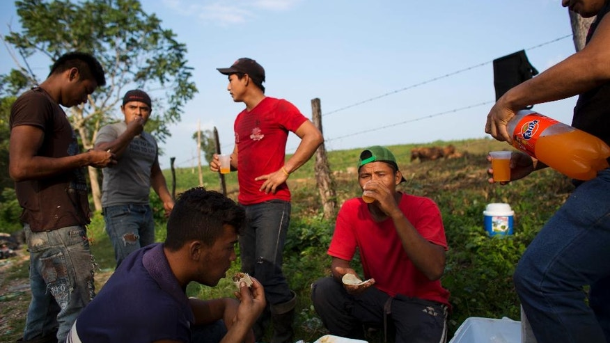 In this Dec. 7, 2016 photo, Honduran migrant Carlos Mejia, second right, shares breakfast with Honduran and Mexican workers as they prepare to begin a long day sorting and packing used plastic bottles for recycling, on the outskirts of Tenosique, Tabasco state, Mexico. Mejia earns $8 a day working 12 hours slicing plastic bottles or feeding scrap metal into a compactor for a recycler. With that he can pay the electricity and water for their rented room and buy some food. (AP Photo/Rebecca Blackwell)
