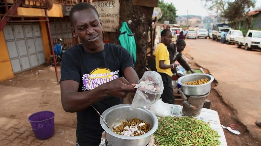 "In this photo taken Friday, Nov. 25, 2016, Patrick Magezi cuts an onion into a saucepan frying edible grasshoppers, at a stall in the Kamwokya district of the capital Kampala, in Uganda. Grasshoppers, known in the local Luganda language as ""nsenene,"" are a delicacy among millions in this East African during the rainy season. Fried grasshoppers have become a lucrative trade and businesses around the nation are making the most of the demand for the crunchy critters.  (AP Photo/Stephen Wandera)"
