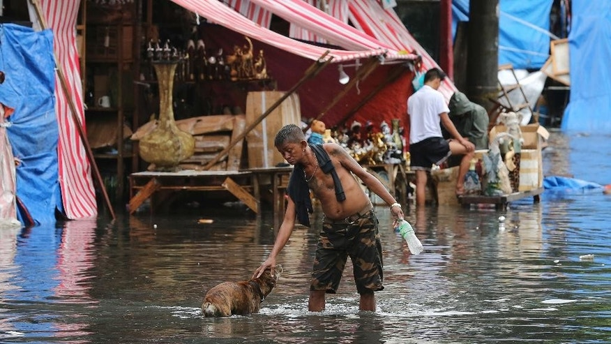 A man pets a dog along a flooded street caused by rains from Typhoon Nock-Ten in Quezon city, north of Manila, Philippines on Monday, Dec. 26, 2016. The powerful typhoon slammed into the eastern Philippines on Christmas Day, spoiling the biggest holiday in Asia's largest Catholic nation, where a governor offered roast pig to entice villagers to abandon family celebrations for emergency shelters. (AP Photo/Aaron Favila)