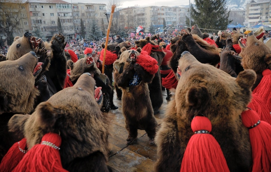 People wearing bear fur costumes dance during the annual bear ritual gathering in Comanesti, Romania, Friday, Dec. 30, 2016. In pre-Christian rural traditions, dancers wearing colored costumes or animal furs, toured from house to house in villages singing and dancing to ward off evil, in the present the tradition has moved to Romania's cities too, where dancers travel to perform the ritual for money. (AP Photo/Vadim Ghirda)