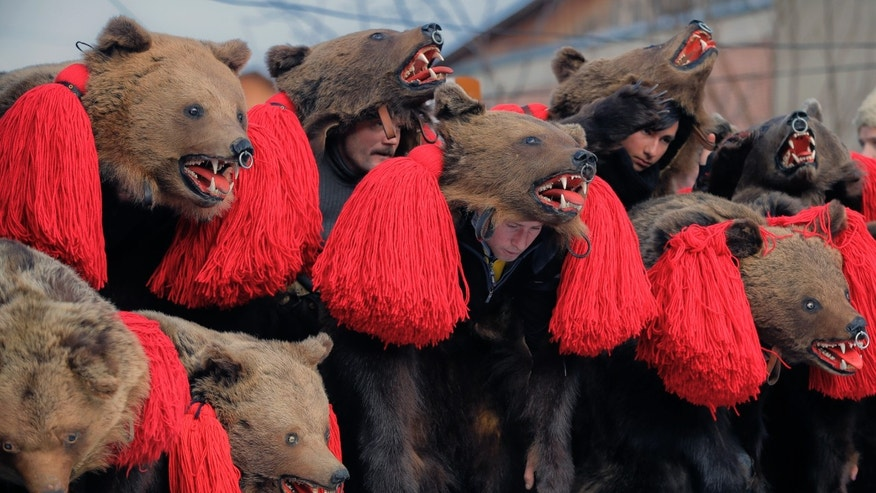 People wearing bear fur costumes dance during the annual bear ritual gathering in Comanesti, Romania.