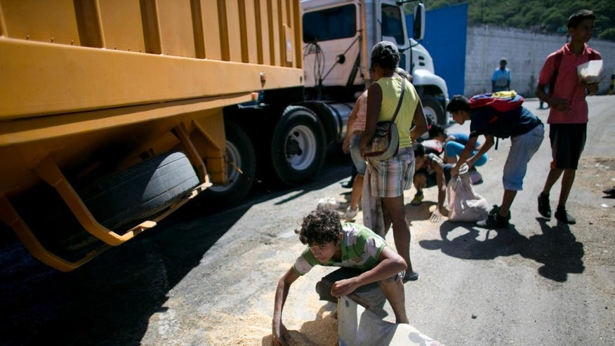 In this Nov. 14, 2016 photo, a youth uses his pillow as a bag to collect rice from the pavement that shook loose from a food cargo truck waiting to enter the port in Puerto Cabello, Venezuela, the port that handles the majority of Venezuela's food imports. As millions of Venezuelans go hungry this year, food trafficking has become one of the most lucrative businesses in the country. (AP Photo/Ariana Cubillos)