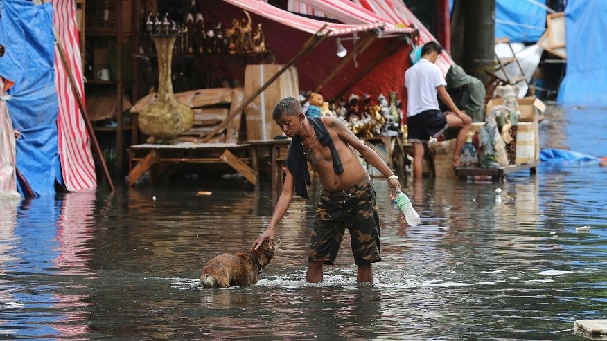 In this Thursday Dec. 29, 2016 photo, a man pets a dog along a flooded street caused by rains from Typhoon Nock-Ten in Quezon city, north of Manila, Philippines. The powerful typhoon slammed into the eastern Philippines on Christmas Day, spoiling the biggest holiday in Asia's largest Catholic nation, where a governor offered roast pig to entice villagers to abandon family celebrations for emergency shelters. (AP Photo/Aaron Favila, File)