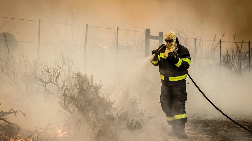 In this photo taken Wednesday, Jan. 4, 2017 a fireman battles a blaze in Somerset West near Cape Town, South Africa. Authorities say wildfires raging in South Africa's wine region have destroyed part of one of the country's oldest estates, while some slopes of Cape Town's Table Mountain burned. (AP Photo/Stefan Smuts)