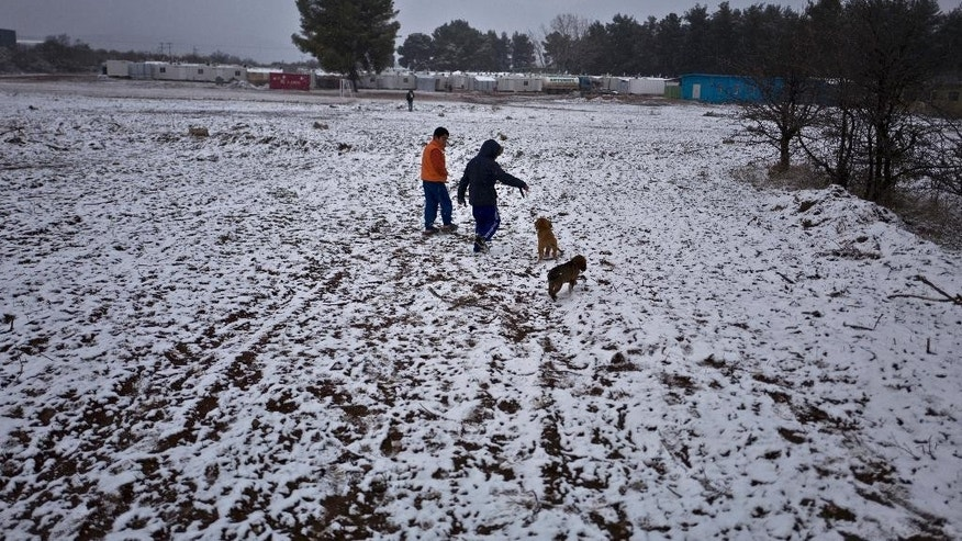 Syrian refugee boys play with stray puppies during snowfall at the refugee camp of Ritsona about 86 kilometers (53 miles) north of Athens, Saturday, Jan. 7, 2017. Over 62,000 refugees and migrants are stranded in Greece after a series of Balkan border closures and an European Union deal with Turkey to stop migrant flows. (AP Photo/Muhammed Muheisen)