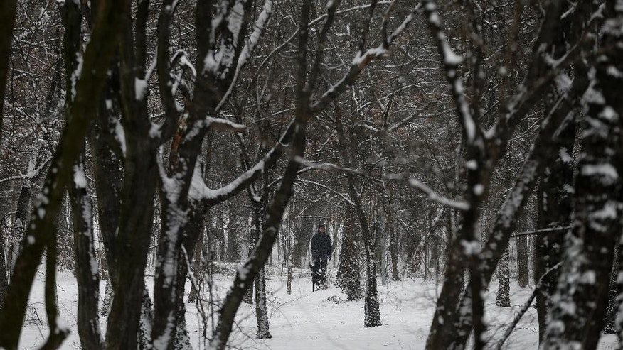 A man with a dog walks through a snow covered park on a cold winter day in Belgrade, Serbia, Monday, Jan. 9, 2017. With temperatures dropping to -30 degrees Celsius (-22 Fahrenheit) Serbian authorities have declared emergency measures in nine municipalities in central and southern parts of the country as fresh snow and extremely low temperatures have blocked roads and cut off villages.  (AP Photo/Darko Vojinovic)