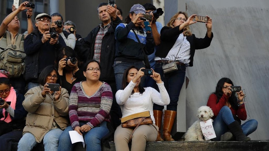 "A dog wears a sign reading ""Pena out,"" as people take pictures of thousands marching in anger against the government of Enrique Pena Nieto following a 20 percent rise in gas prices, in Mexico City, Monday, Jan. 9, 2017. Demonstrators have been protesting across Mexico since the gasoline price hike took effect on New Year's Day, and the anger has occasionally erupted into violence, including several days of looting last week. (AP Photo/Rebecca Blackwell)"