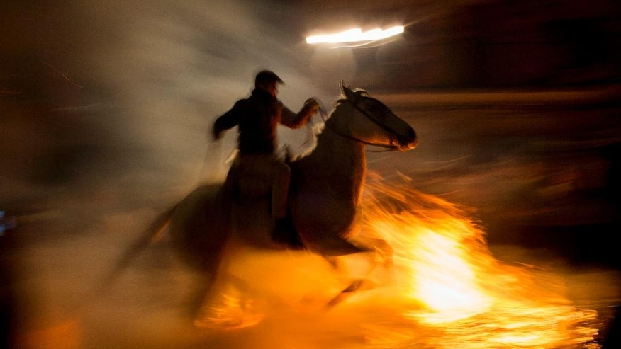 "A man rides a horse through a bonfire as part of a ritual in honor of Saint Anthony the Abbot, the patron saint of domestic animals, in San Bartolome de Pinares, about 100 km west of Madrid, Spain, on Monday, Jan. 16, 2017. On the eve of Saint Anthony's Day, hundreds ride their horses through the narrow cobblestone streets of the small village of San Bartolome during the ""Luminarias,"" a tradition that dates back 500 years and is meant to purify the animals with the smoke of the bonfires and protect them for the year to come. (AP Photo/Emilio Morenatti)"