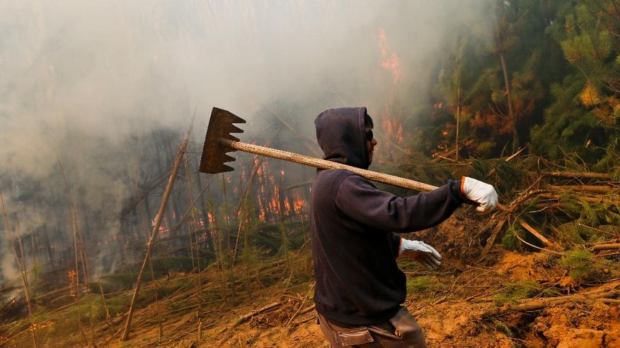 In this Jan. 21, 2017 photo, a firefighter walks past burning brush in Pumanque, Chile. Chile is suffering one of its worst fire waves in history. The fires have outpaced local ability to put them out, forcing Chile to request international aid. (AP Photo/Esteban Felix)