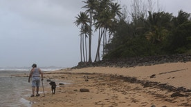 A man walks with his dog on the beach in San Juan, Puerto Rico, August 27, 2015. Tropical Storm Erika weakened slightly on Thursday as it dumped torrential rain on islands in the Eastern Caribbean and appeared to be headed for the U.S. East Coast early next week, the U.S. National Hurricane Center said. Erika, the fifth named storm of the Atlantic hurricane season, was about 160 miles (257 km) west of Guadalupe with maximum sustained winds of 45 miles per hour (72 kph) as of midday. It was expected to reach the Virgin Islands and Puerto Rico by Thursday evening, then pass over the Dominican Republic on Friday and continue northwest over the Bahamas. REUTERS/Alvin Baez   - RTX1PYHX