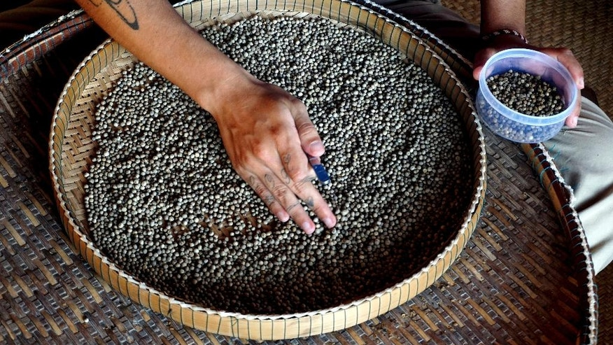 In this Nov. 23, 2016 photo, a worker sorts through the pepper by hand in Kampot, Cambodia. Lauded by celebrity chefs, exorbitantly priced, Cambodia's Kampot pepper is enjoying a renaissance, aided by special recognition and protection from the European Union in 2016. (AP Photo/Denis Gray)
