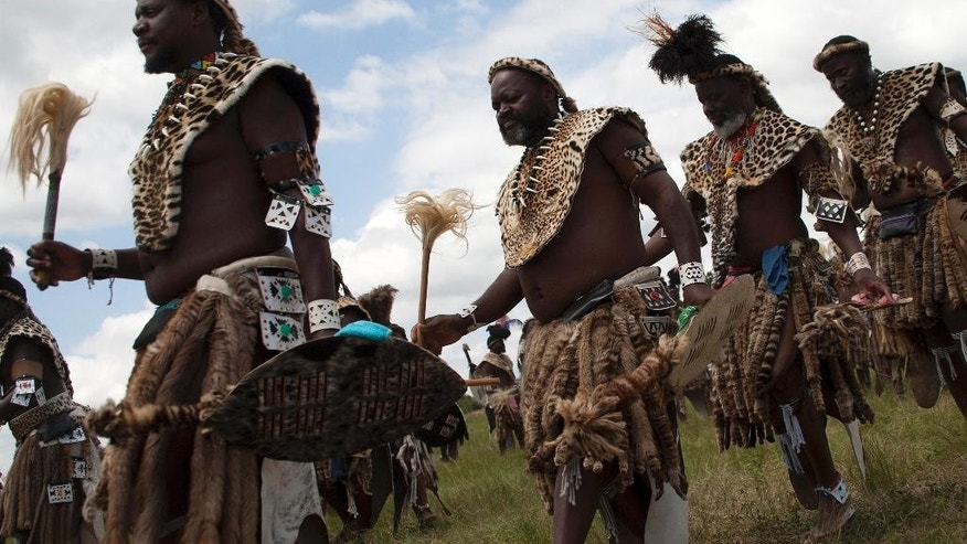 Members of the Shembe Church wearing leopard skins during their dance celebrations at eBuhleni, near Durban, South Africa, Sunday, Jan 29, 2017. At least 1,200 men in ceremonial attire have danced at a mainly Zulu gathering wearing a mix of hides of illegally hunted leopards and Chinese-made, spotted capes designed by conservationists to reduce demand for the real thing. (AP Photo/Khaya Ngwenya)