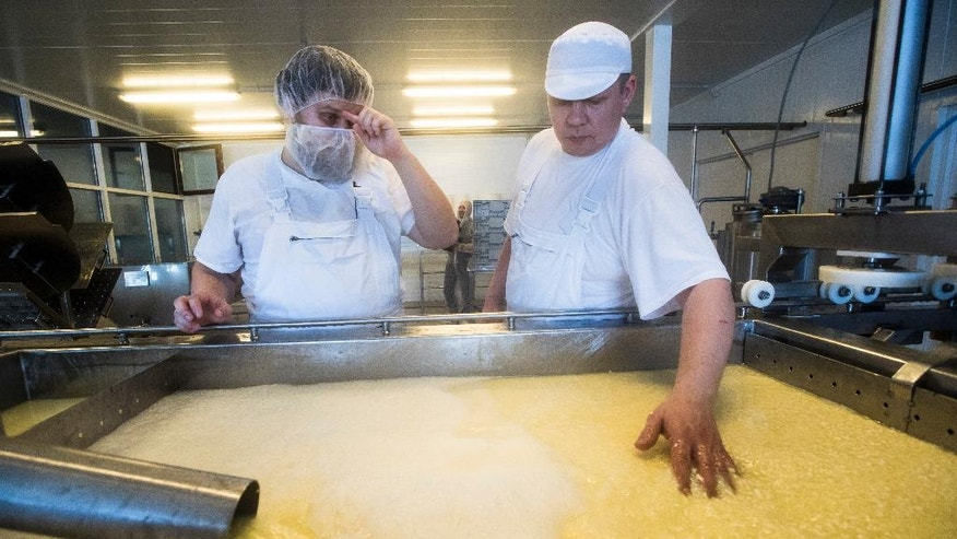 In this photo taken on Wednesday, Jan. 25, 2017, Russian cheesemaker Oleg Sirota, left, and his unidentified partner make cheese in Istra district, about 80 kilometers outside Moscow, Russia. Sirota is one of Russia's winners from international sanctions. Demand for cheese is so high that Sirota has a three-month waiting list for new customers and he plans to increase production 10 times over this year with new facilities and a hiring push. (AP Photo/Pavel Golovkin)