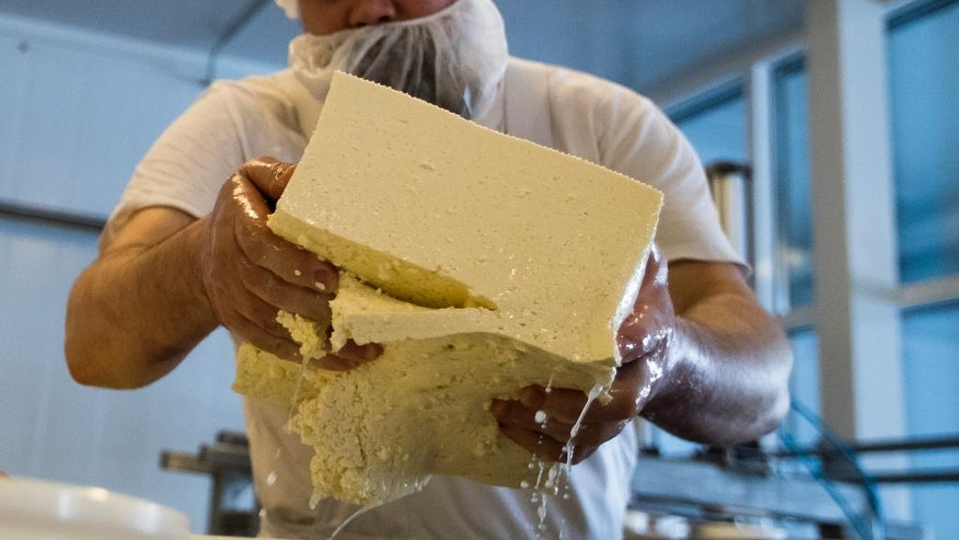 In this photo taken on Wednesday, Jan. 25, 2017, Russian cheesemaker Oleg Sirota makes cheese iin Istra district, about 80 kilometers outside Moscow, Russia. Sirota is one of Russia's winners from international sanctions. Demand for cheese is so high that Sirota has a three-month waiting list for new customers and he plans to increase production 10 times over this year with new facilities and a hiring push. (AP Photo/Pavel Golovkin)