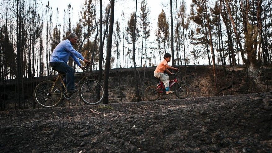 Alberto Diaz and his son Javier Diaz ride their bikes through a mountainous landscape scorched by wildfires in Chile's Cauquenes community, Wednesday, Feb. 1, 2017. Strong winds are continuing to stoke the flames of raging wildfires in Chile. Firefighters and residents continue to fight the fast-spreading blazes on the ground while a Russian supertanker plane and a Brazilian Hercules dump thousands of gallons of water on the area southeast of the Chilean capital. (AP Photo/Esteban Felix)