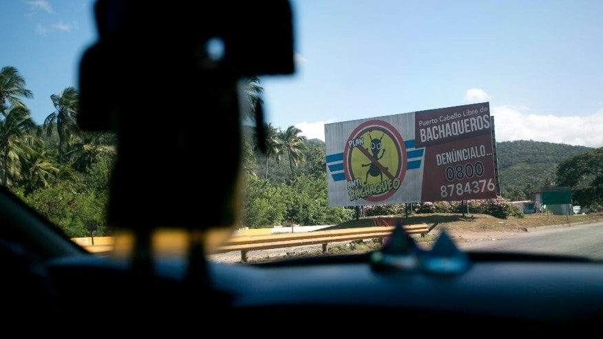 "FILE - In this Nov. 14, 2016 file photo, a billboard along the highway near Puerto Cabello, Venezuela, features an ant drawing and the Spanish slogan, ""Freedom from bachaqueros."" Venezuelans call people who make a living illegally reselling food ""bachaqueros,"" after the leaf-cutter ants that haul food through the jungles. A bipartisan group of 34 U.S. lawmakers has sent a letter to President Donald Trump urging him to step up pressure on Venezuela's government by immediately sanctioning officials responsible for corruption and human rights abuses. (AP Photo/ Ariana Cubillos, File)"