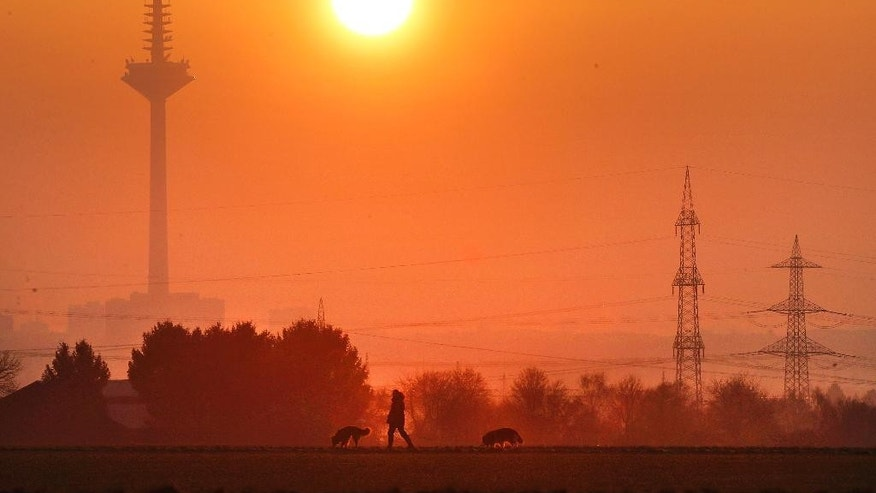 A man walks his dogs as the sun rises on a field in Eschborn near Frankfurt, Germany, Wednesday, Feb. 15, 2017. (AP Photo/Michael Probst)