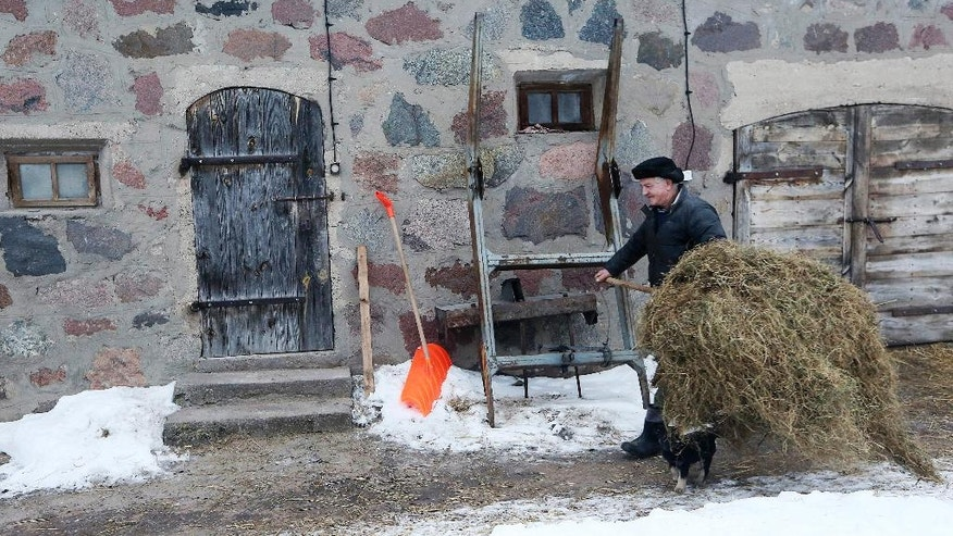 In this photo taken Feb. 13, 2017, Witold Pogorzelski carries hay for his cows, in Kobylin-Borzymy, eastern Poland. Witold and his wife Barbara are among those who voted for the populist Law and Justice party. Months before Britain voted to leave the European Union or the United States elected President Donald Trump, Poles booted out their own political establishment, a pro-business and pro-European party, Civic Platform, which had governed for eight years. (AP Photo/Czarek Sokolowski)
