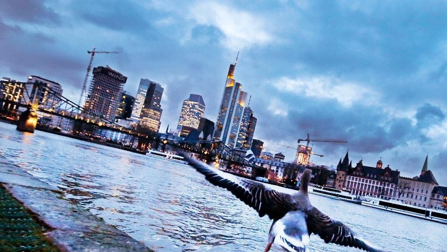 A goose starts for a flight over the river Main with the buildings of the banking district in background in Frankfurt, Germany, Tuesday evening, Feb. 28, 2017.(AP Photo/Michael Probst)