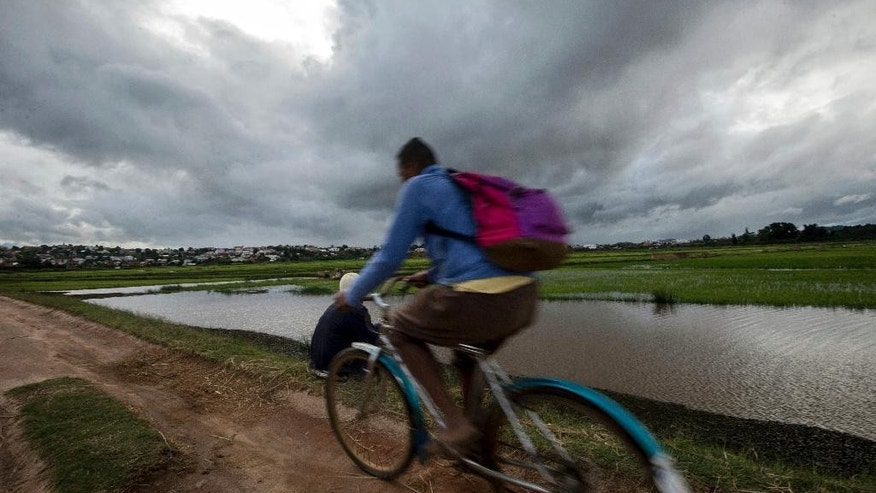 A cyclist pedals home past flooded rice fields in Madagascar's capital Antananarivo, on Thursday, March 9, 2017. Officials in Madagascar say the death toll from Cyclone Enawo has risen to at least five and about 10,000 people have left their homes because of storm damage. (AP Photo/Alexander Joe)