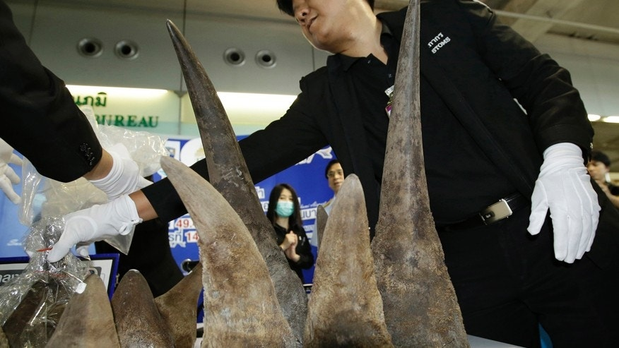 Rhino horns worth $7m found in suitcase at Bangkok airport