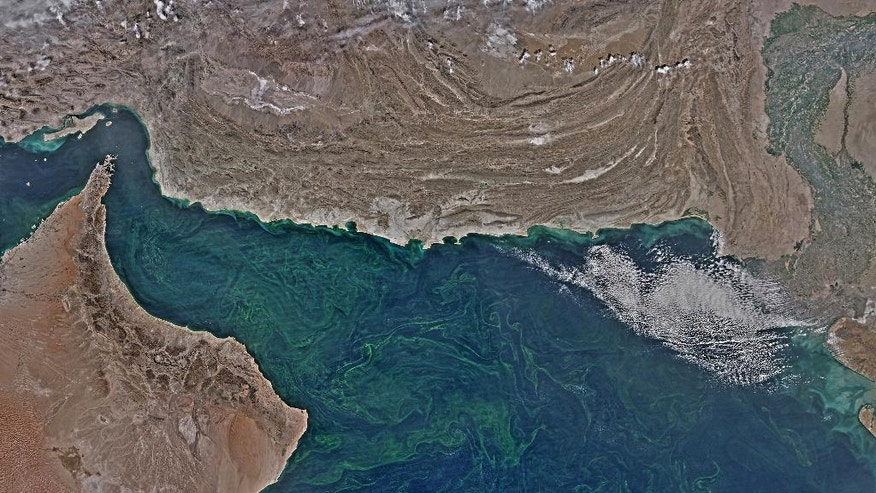 In this Feb. 14, 2015 composite image from the NASA Aqua-MODIS satellite, a mass of the algae noctiluca scintillans blooms in the Arabian Sea off the coast of Oman stretching past Pakistan to India. Scientists who study the algae say the microscopic organisms are thriving in new conditions brought about by climate change, and displacing the zooplankton that underpin the local food chain, threatening the entire marine ecosystem. (Norman Kuring/Courtesy of NASA, via AP)
