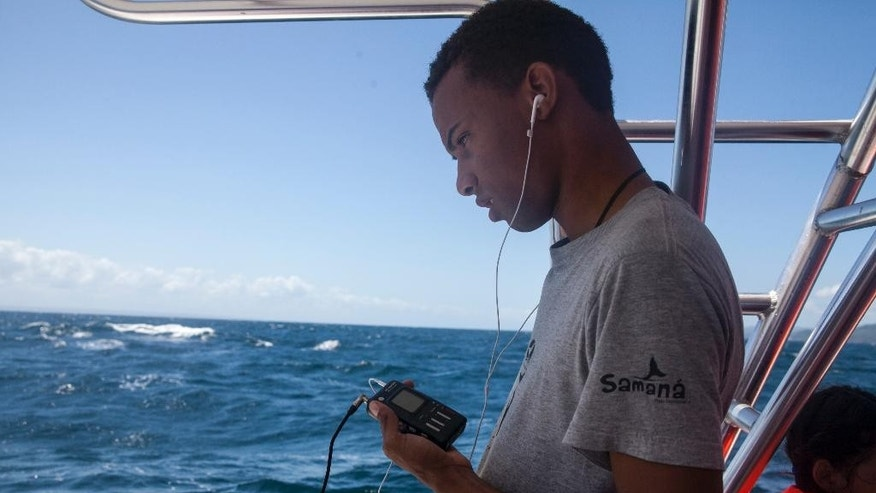 In this Tuesday, March 14, 2017 photo, whale guide Daniel Aurelio Reyes tries to pick up whale sounds after lowering the hydrophone into the water, but gets mostly static, during a whale watching tour for hearing impaired students near Samana, Dominican Republic. The technology was developed for music producers and aficionados and incorporated into a music program launched for the National School for the Deaf in Santo Domingo. (AP Photo/Tatiana Fernandez)