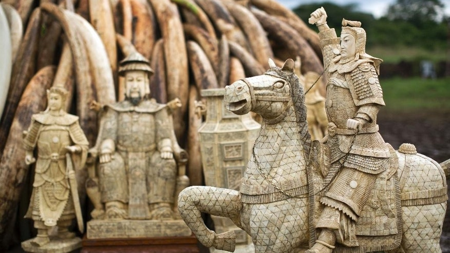 Chinese demand for elephant ivory drops, new report says