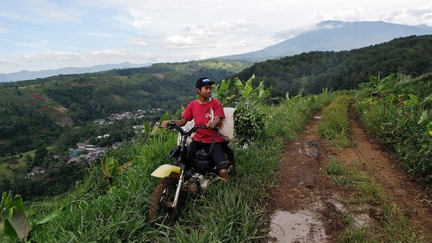 "In this March 8, 2017 photo, a farmer rides his motorbike on a dirt road as Gede Pangrango Mountains is seen in the background in Bogor, West java, Indonesia. A sprawling ""Trump Community"" that will rise next to Gunung Gede Pangrango National Park has alarmed conservationists. They predict that the overall development, including a massive theme park, will overwhelm a refuge for some of Indonesia's most threatened species. The 3,000 hectare (11.6 square miles) project is the brainchild of President Donald Trump's Indonesian partner, billionaire and presidential hopeful Hary Tanoe. (AP Photo/Tatan Syuflana)"