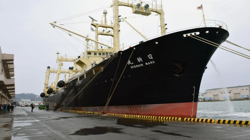 Japanese whaling vessel Nisshin Maru is anchored in Shimonoseki, western Japan, Friday, March 31, 2017. Japanese whaling fleet has returned with 333 whales it caught in the Antarctic, filling its planned quota for a second straight year under a revised program following an international court ruling. The Fisheries Agency said Friday that Japan's five-ship fleet killed 333 minke whales during the four-month expedition. (Souichiro Tanaka/Kyodo News via AP)