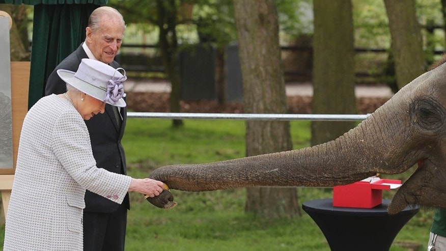 Britain's Queen Elizabeth II and her husband the Duke of Edinburgh are greeted by an elephant at the Zoological Society of London's Whipsnade Zoo, where they officially opened the zoo's new Centre for Elephant Care as part of a visit, Tuesday April 11, 2017. (Chris Radburn//PA via AP)