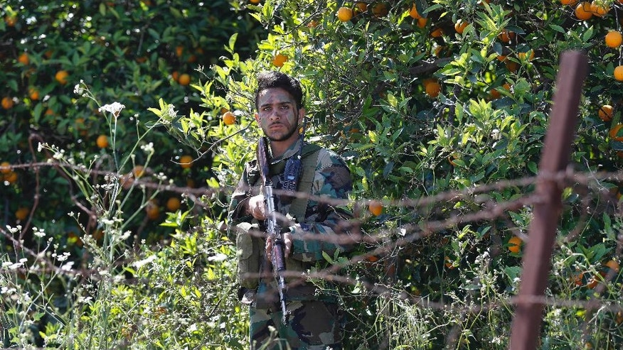 A Hezbollah fighter takes his position between orange trees, at the coastal border town of Naqoura, south Lebanon, Thursday, April 20, 2017. The border tour is the first since an inconclusive month long war between Israel and Hezbollah in 2006, and comes amid heightened tensions along the border between the old adversaries, with each side promising to inflict massive casualties on the other in any upcoming war. (AP Photo/Hussein Malla)