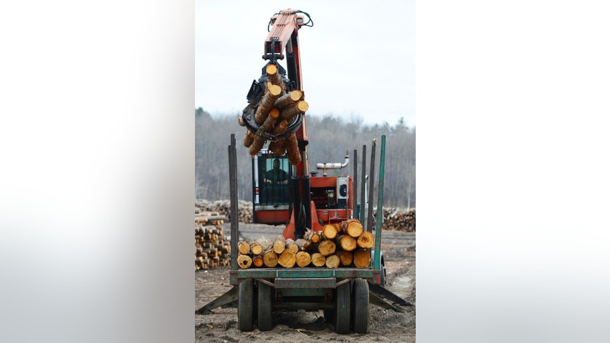 Softwood lumber is unloaded at Murray Brothers Lumber Company woodlot in Madawaska, Ontario on Tuesday, April 25, 2017.  The upper Midwest timber industry is welcoming the Trump administration's announcement that it's imposing tariffs averaging 20 percent on softwood lumber entering the United States from Canada.  (Sean Kilpatrick/The Canadian Press via AP)
