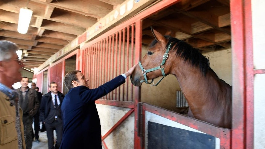 French centrist presidential candidate Emmanuel Macron pets a horse as he visits a farm in Usseau, central France, Saturday, April 29 , 2017. Macron faces far-right presidential candidate Marine Le Pen in a May 7 runoff election. (Eric Feferberg/Pool via AP)