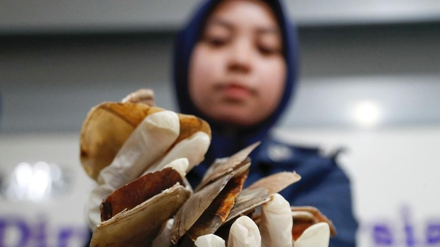 A Malaysian Customs official holds seized pangolin scales after a press conference at its office in Sepang, Malaysia, Monday, May 8, 2017. Malaysian authorities said they have seized pangolin scales worth 9.2 million ringgit ($2.1 million) and believed to have been smuggled from Africa. (AP Photo/Vincent Thian)