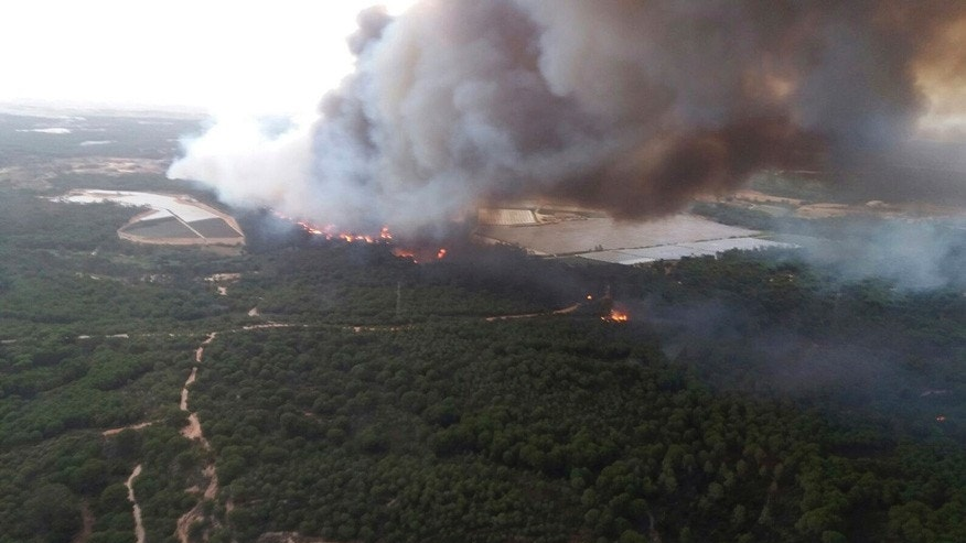 In this image supplied by INFOCA and taken Saturday June 24, 2017, a forest fire blazes in the Moguer area in southern Spain. A forest fire in southern Spain has forced the evacuation of 1,000 people and is threatening Donana National Park, one of Spain's most important nature reserves and a UNESCO World Heritage site since 1994, and famous for its biodiversity, authorities said Sunday. (INFOCA via AP)