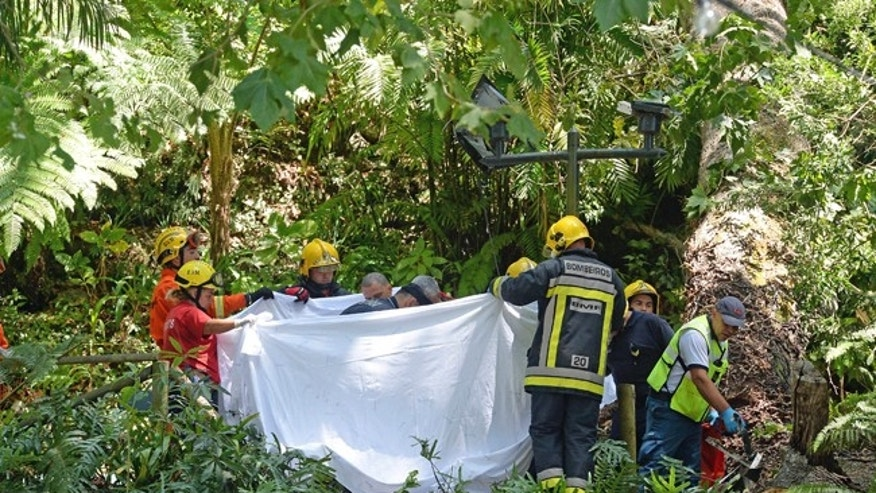 Firefighters hold a blanket as bodies are removed from the scene where a tree fell on a large crowd outside of Funchal, the capital of Madeira island, Portugal.