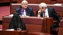 Sen. Pauline Hanson, bottom left, wears a burqa during question time in the Senate chamber at Parliament House in Canberra, Australia, Thursday, Aug. 17, 2017. Hanson, leader of the anti-Muslim, anti-immigration One Nation minor party, sat wearing the black head-to-ankle garment for more than 10 minutes before taking it off as she rose to explain that she wanted such outfits banned on national security grounds. (Lukas Coch/AAP Image via AP)