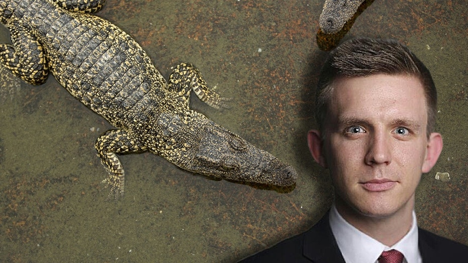 Financial Times journalist Paul McClean  was believed to have been taken by a crocodile Thursday