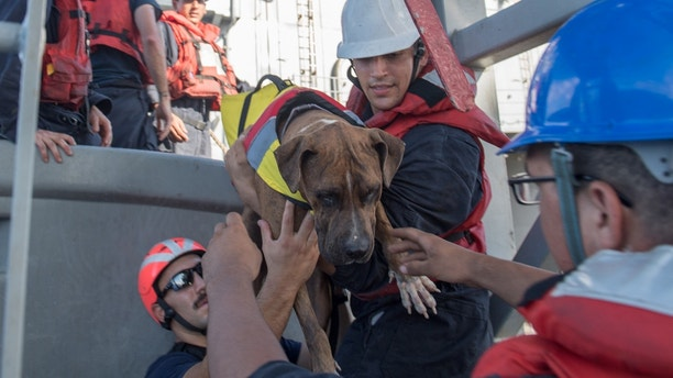 171025-N-UX013-233