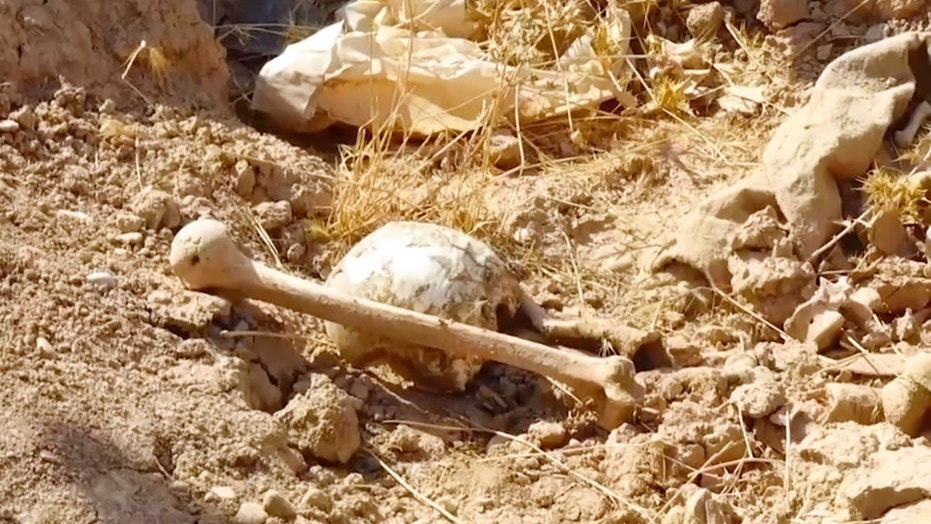 Kirkuk governor Rakan Saed said Sunday that the bodies of civilians and security forces have been found at the mass grave that could contain up to 400 bodies. (Kirkuk Governor's Office via AP)
