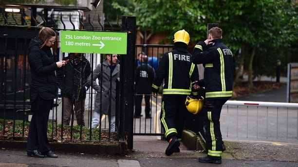 Firefighters enter London Zoo, London, Saturday, Dec. 23, 2017. London Zoo officials say a fire that broke out before the facility opened Saturday morning left one aardvark dead and four meerkats missing and presumed dead. Staff members were treated for smoke inhalation and shock after the blaze broke out near the zoo cafe in the early morning hours. (Dominic Lipinski/PA via AP)