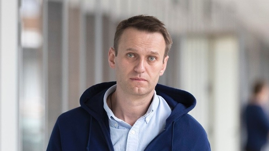 Russian opposition leader Alexei Navalny was nominated for president by hundreds of supporters Sunday.