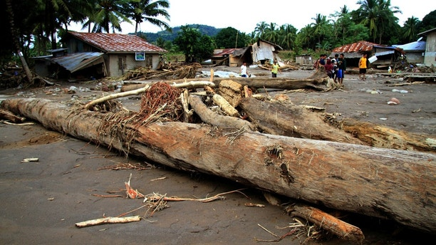 Logs swept by flashfloods lie in a village in Salvador, Lanao del Norte in southern Philippines, December 24, 2017.    REUTERS/Richel V. Umel - RC1711020B40