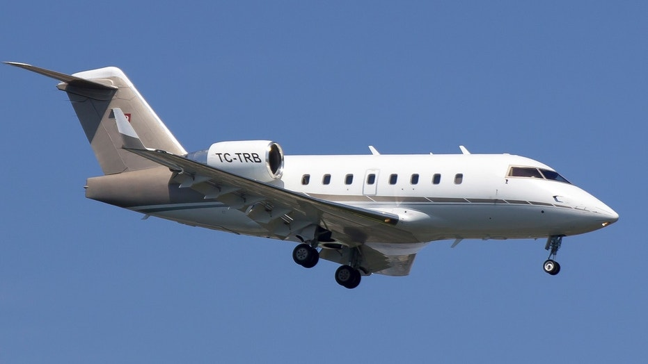 A private jet similar to the aircraft seen here crashed in Iran, killing a socialite and her bachelorette party, according to reports.