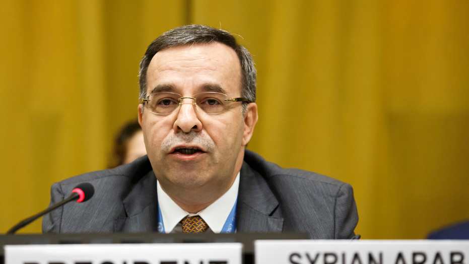 US calls Syrian presidency of disarmament body 'travesty'