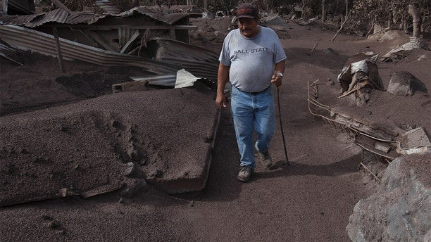 """Efrain Suarez walks through a barren terrain near the Volcan de Fuego, or """"Volcano of Fire,"""" in San Miguel Los Lotes,  Guatemala, Wednesday, June 6, 2018. """"Nobody is going to be able to get them out or say how many are buried here,"""" said Suarez. """"The bodies are already charred,"""" the 59-year-old truck driver said. """"And if heavy machinery comes in they will be torn apart."""" (AP Photo/Moises Castillo)"""
