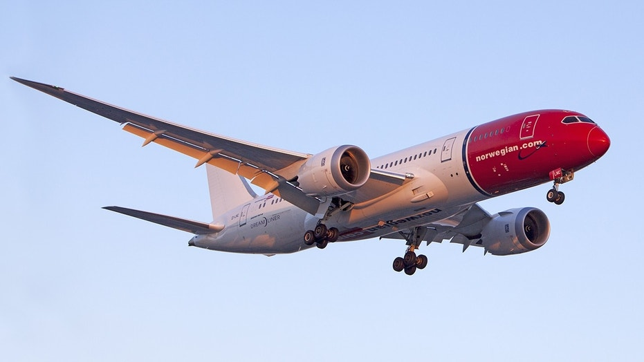 Norwegian Airlines says it is assisting with a police investigation into the alleged incident.